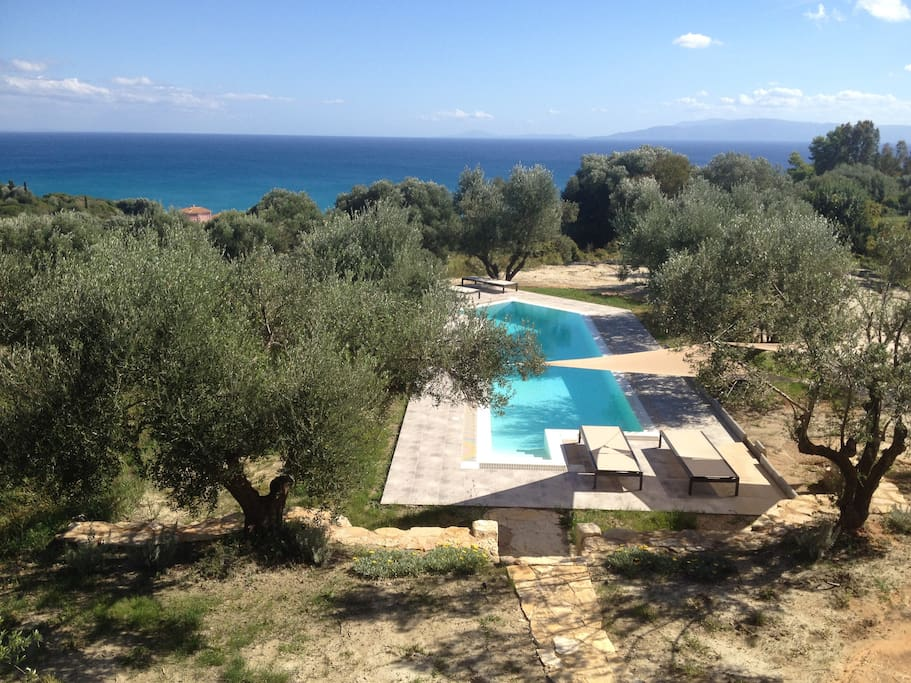 Large overflow pool designed to fit harmoniously among the olive trees