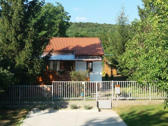 ForestAir Apartment (house&garden)