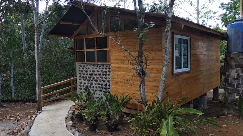 Forest Cabin at the Pitcher Plant Farm