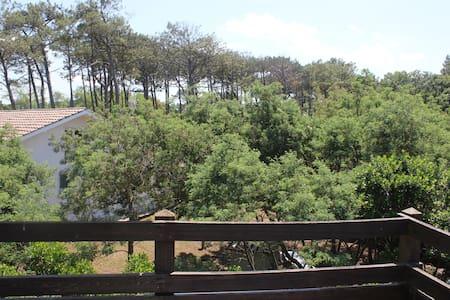 Appart dans villa, terrasse et jardin proche plage