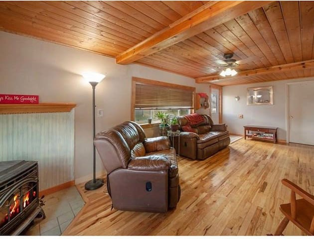 Dog-Friendly House Near Bars & Bus To Breckenridge