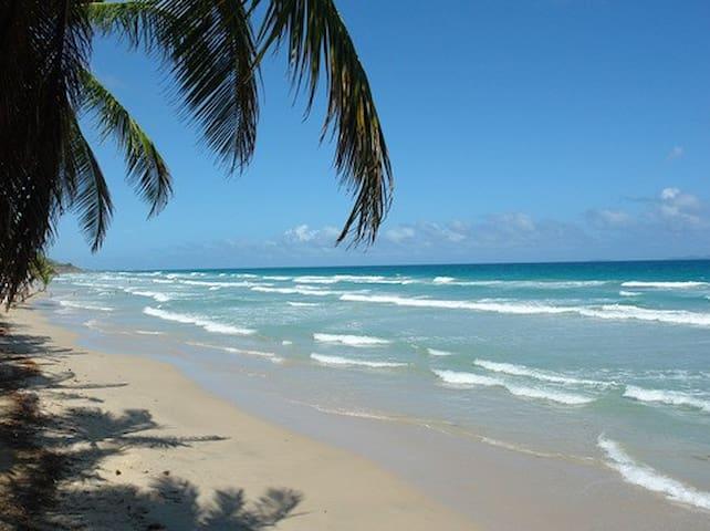 Cabañas en Playa Guacuco - Margarita - La Asunción - Cabin