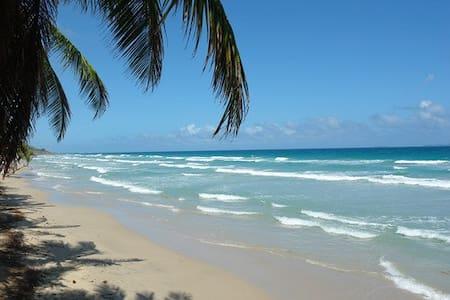Cabañas en Playa Guacuco - Margarita - La Asunción - Blockhütte