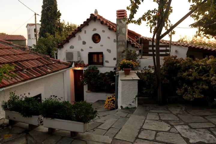 Bardis' Wooden Family Loft House