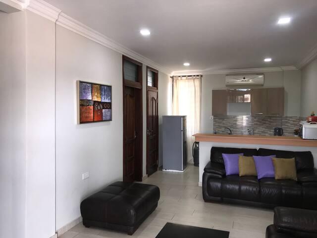 Open Floor Plan Living Room and Kitchen