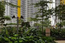 Apartment SPRINGLAKE Bekasi 2BR (HC-021)