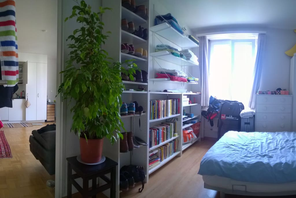 We like interior panoramas as well. This is the bedroom. There is a fine variety of literature. Feel free to browse it, or take some to the park with you. The Plant is not dangerous.