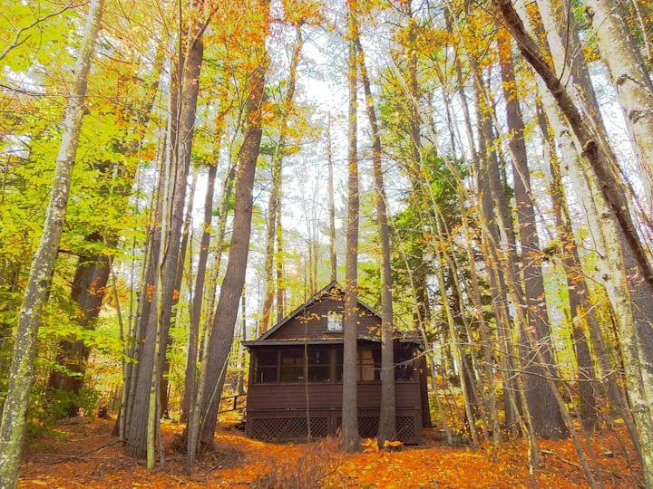 Quiet and Comfy Historic Catskill Mountain Cabin