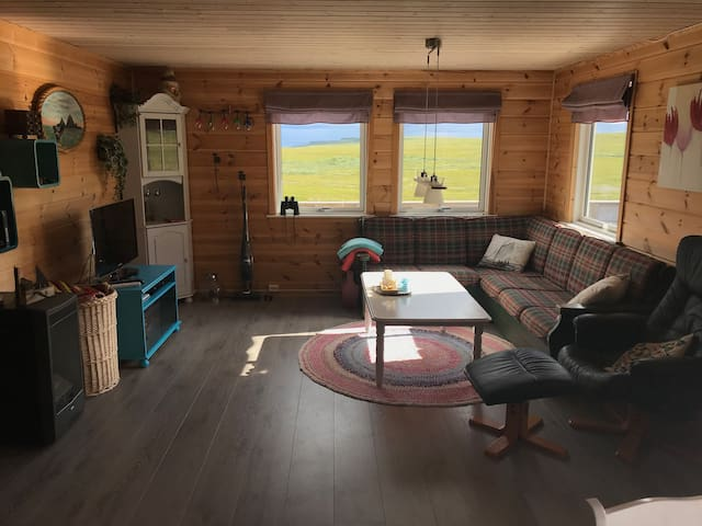 The livingroom has a couch who can be turned into a small dobbelbed. There is also a TV and sockets for electricity. The cabin use solarpanel and battery for electricity and light.