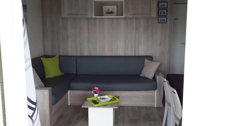 salon salle à manger et 1 canapé convertible