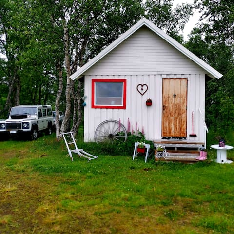 Small and cosy guesthouse under northern lights