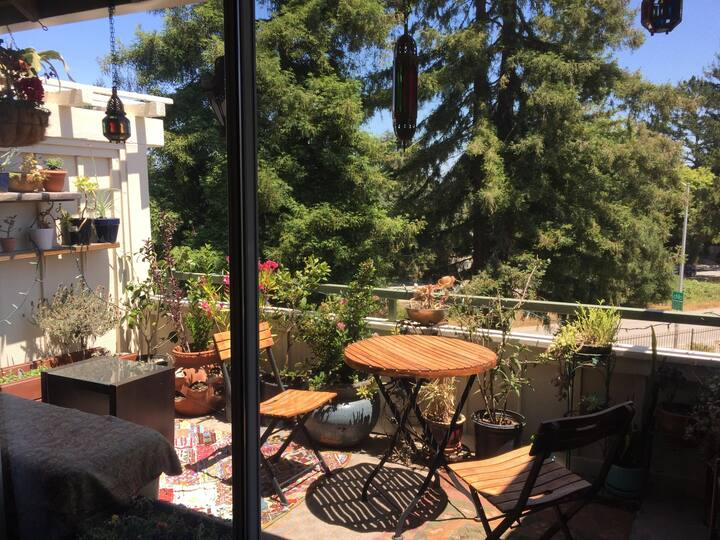 Sunny apartment near beach and hiking trails!