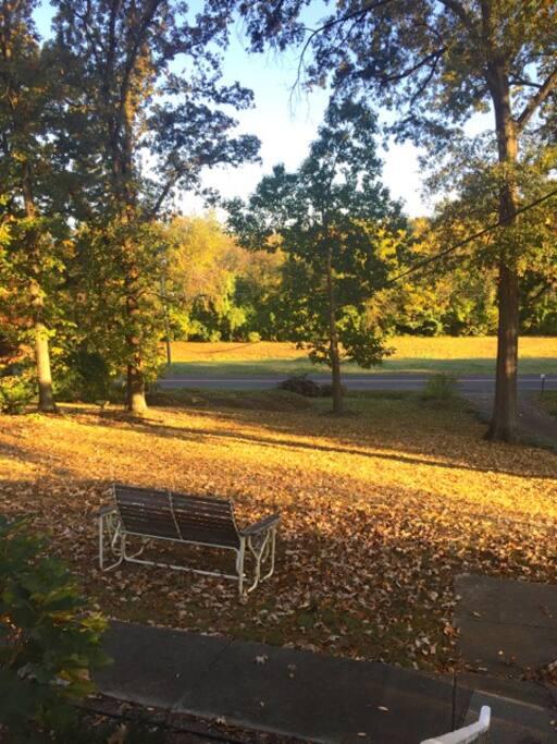 Quiet serene setting.