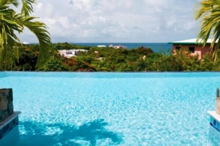 Azula Vista Villa (24687) - St Thomas - 別墅