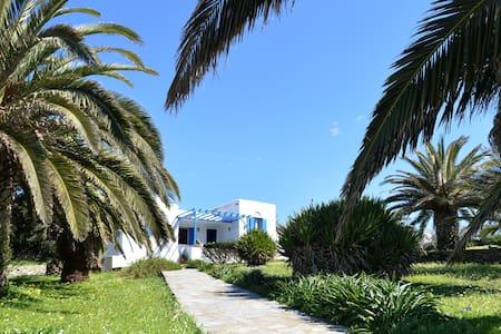 Tinos Luxury Family House - Steni