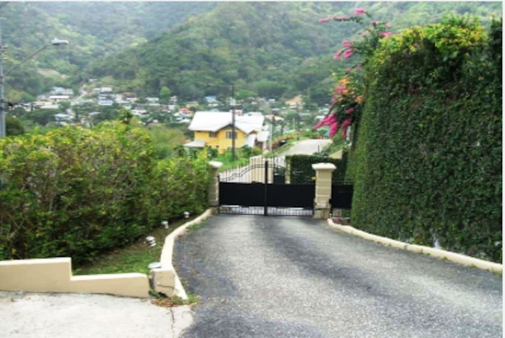 Driveway with more Scenic Views
