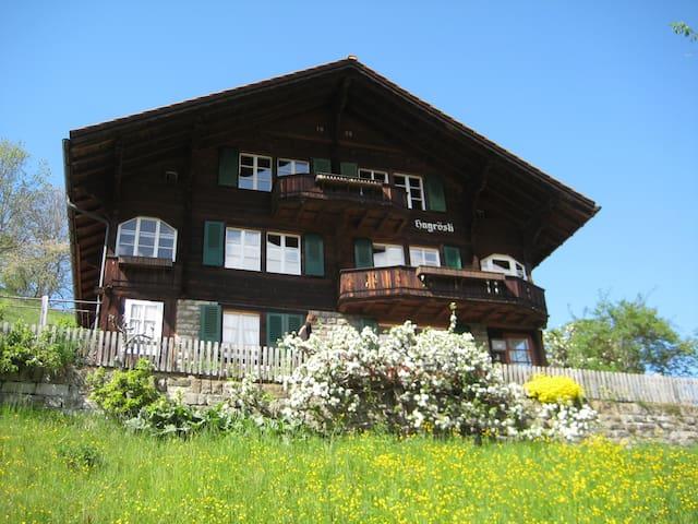 Chalet Hagrösli, Grindelwald - Grindelwald - Apartamento