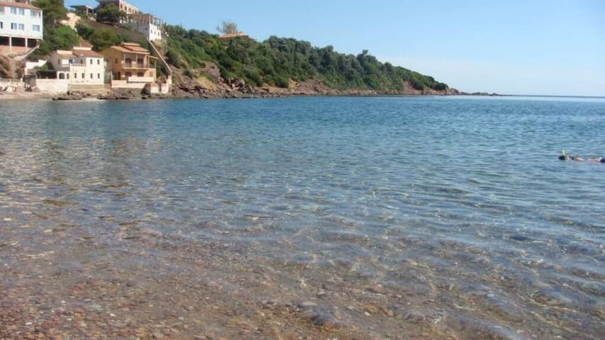 Logement bord de mer/ pieds dans l'eau à Tipaza