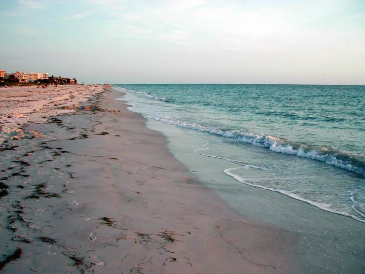 Clean taste and clean beaches!