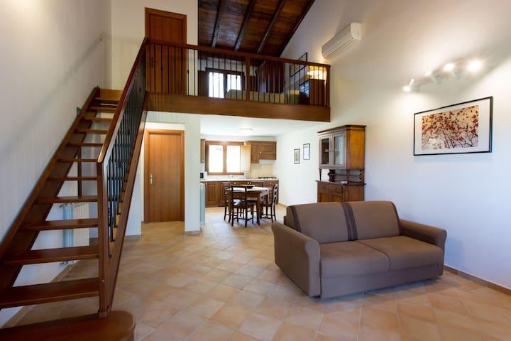 Tiberina 381 - Appartamento Lavanda - Roma - Casa