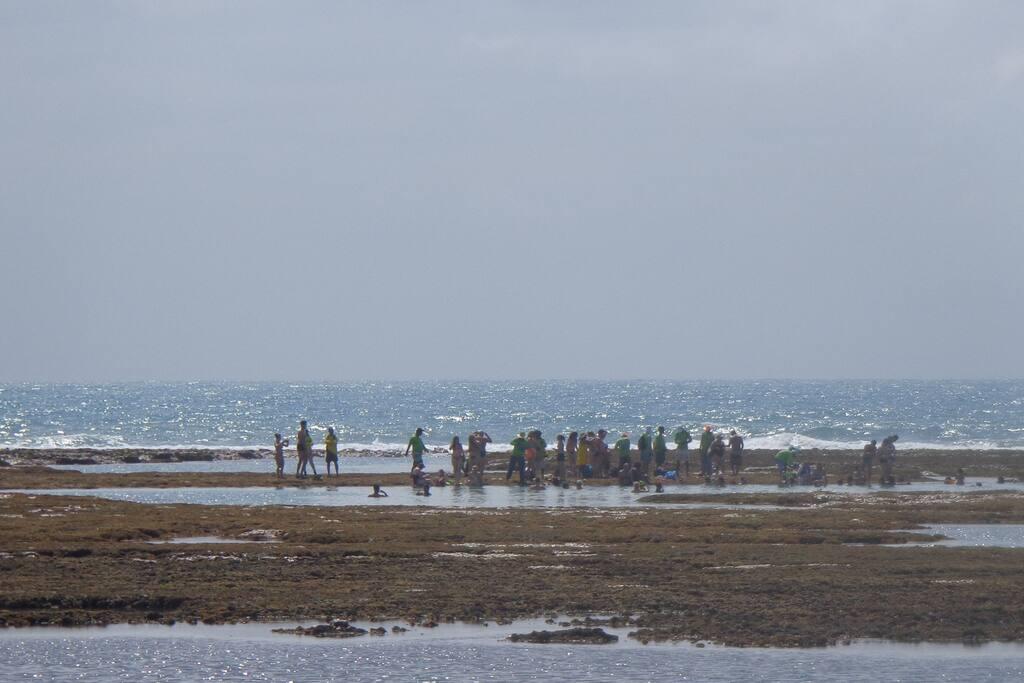 Trecho de mar a 2 quadras de distancia do apartamento. Piscinas naturais a cerca de 05 minutos caminhando.