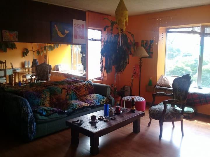 Habitación en el Centro de Concepción