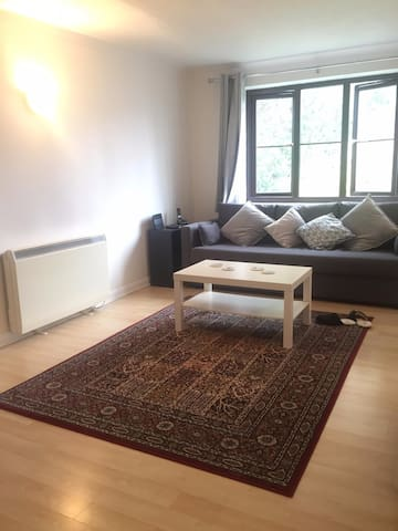 Bright, quiet, spacious London stay with parking