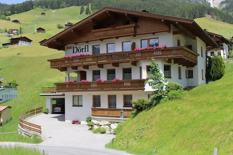 Spacious apartment for 2-4 persons in Tux/Tirol