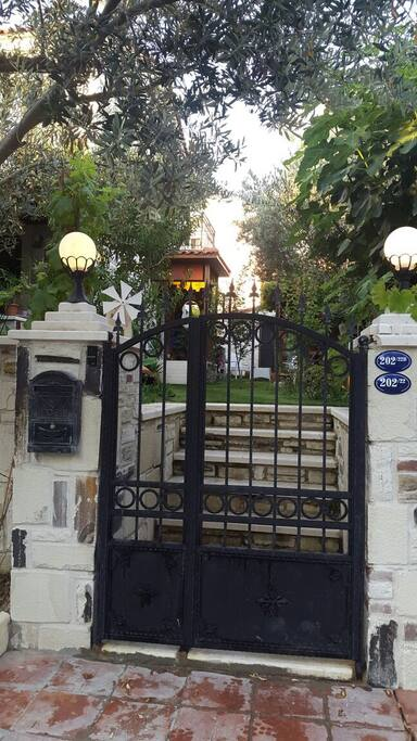 Ana giriş