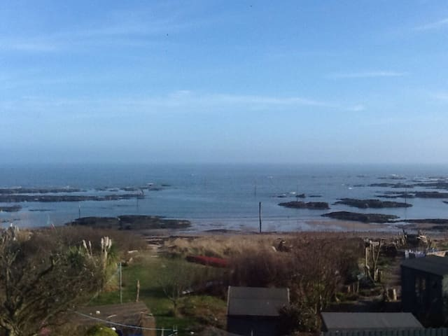 Quirky, cosy, seaside cottage - Carnoustie - Hus