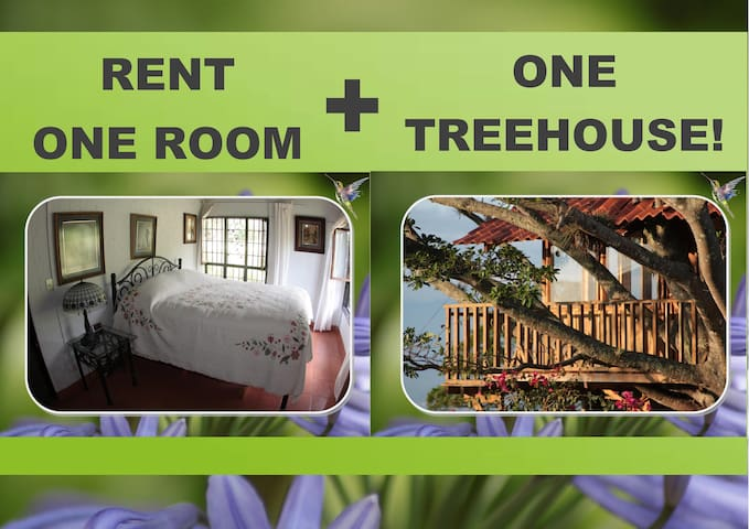 OLD STYLE GUEST ROOM plus ❤️ UNIQUE  TREEHOUSE