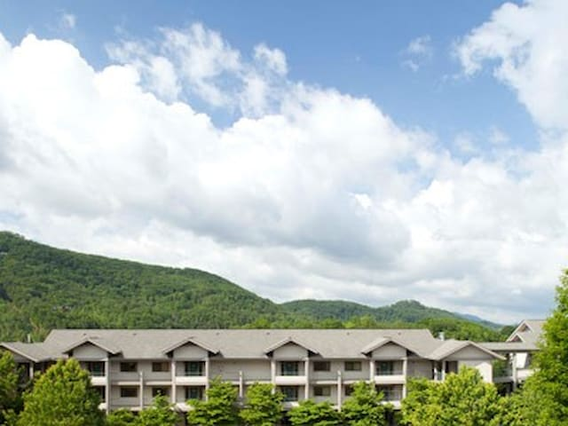 1 BR villa in Pigeon Forge, TN. 11/04 to 11/08 - Pigeon Forge - Villa