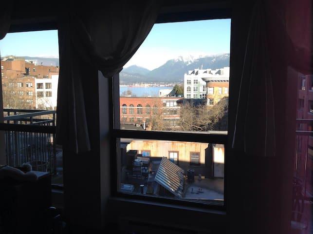 Mountain View - Vancouver - Apartment