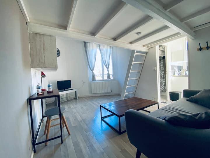 🏆rue de Tinqueux🎗jolie appartement avec mezzanine🎗