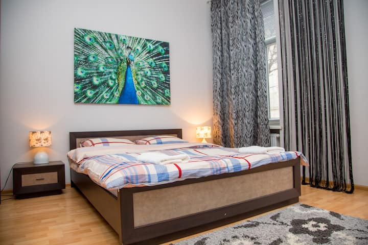 Spacious Apt. in 5 min to main square