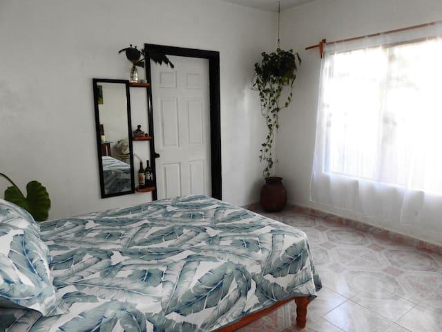 Casa Ceiba Escondida