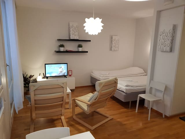 Studio with sauna in center of city