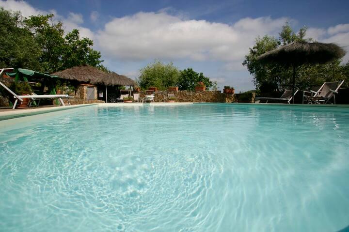 Villa Mirto casa in Toscana  piscine spa mare