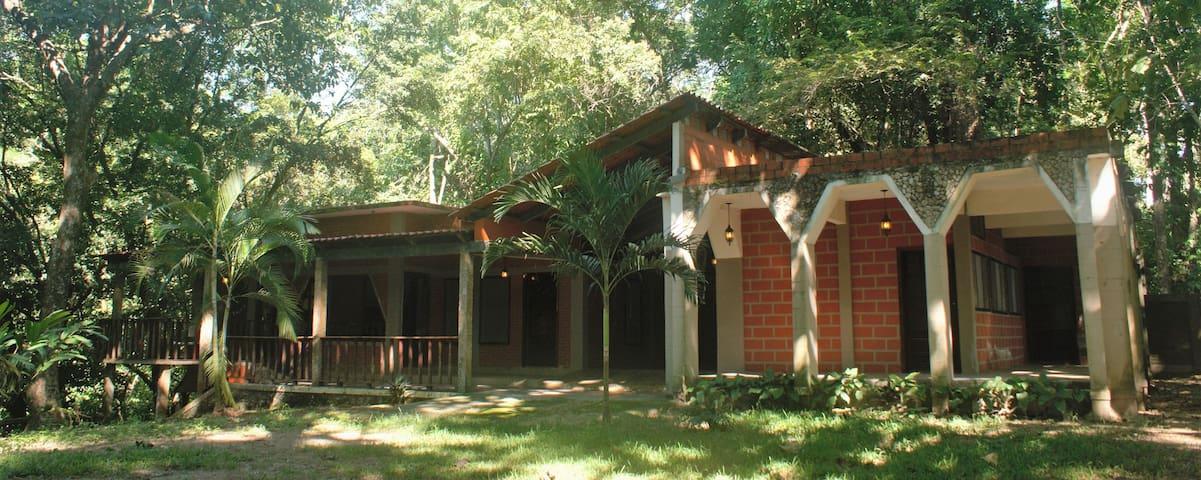 Exclusive Jungle Lodge, Unbeatable location_11 ppl