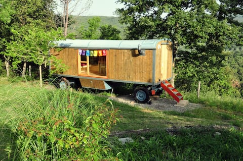 Welcome to the renovated Circus Wagon!!