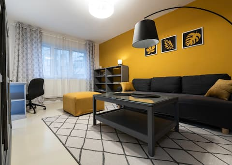 Cozy Stylish Downtown Apartment