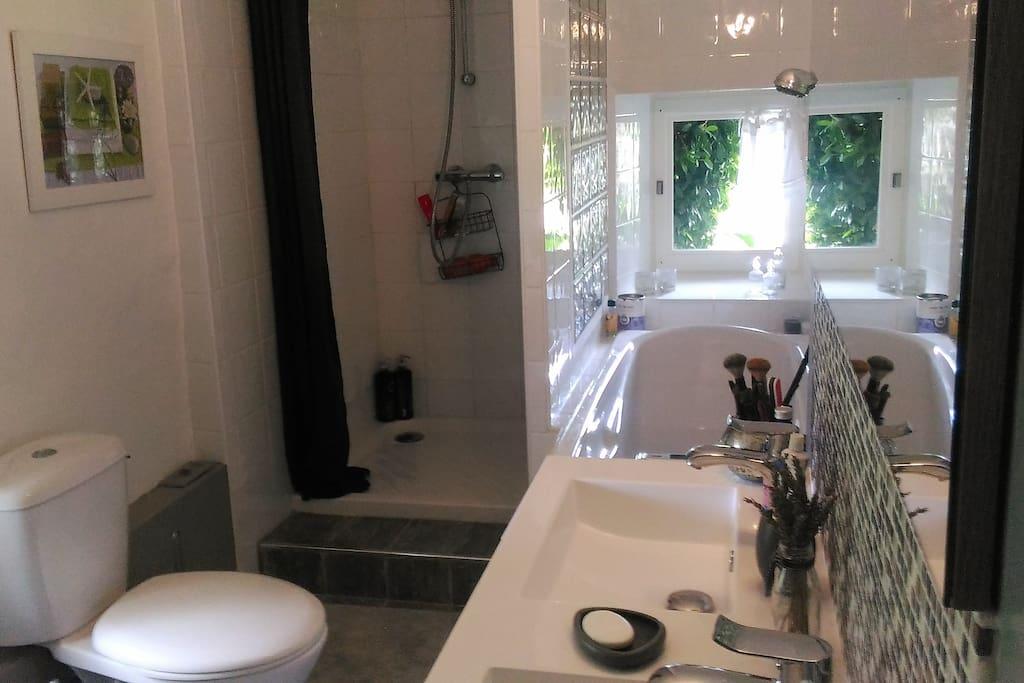 salle de bains + douche