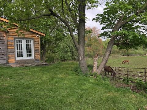 Saugerties/Woodstock Cozy Cabin on the farm