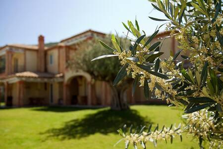 Villa Est: charme near the sea