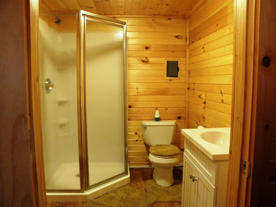 Spacious full bath with shower stall, sink, toilet and comfortable size space for changing.