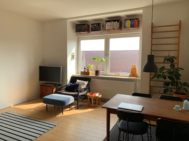 Cozy apartment in the center of Odense
