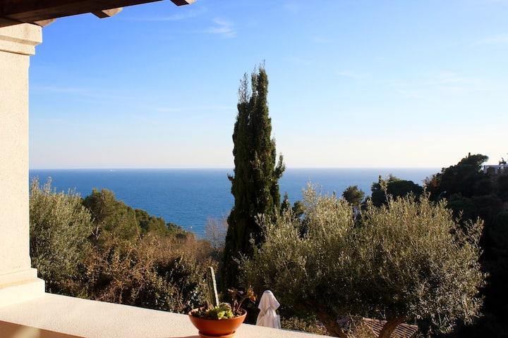 Mediterranean Views in Cala Llevadó