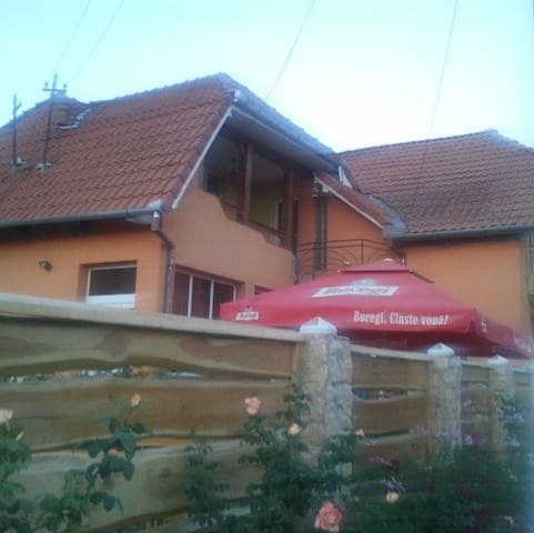 The country and relax house - Poarta Sălajului - Haus