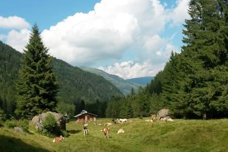 Adamello view, vacanze in Alta Val Camonica - Corteno Golgi