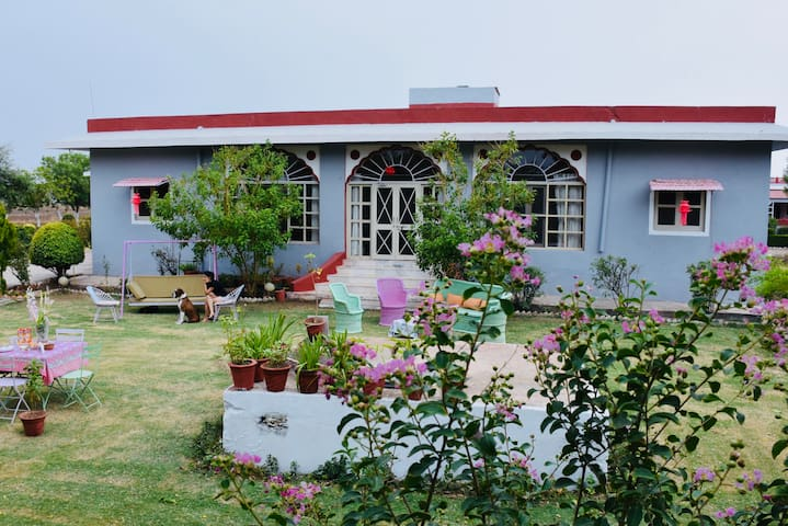 Amourcasa home stay ,local tours, meals & more.